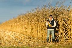 Fazendeiro no campo de milho Fotos de Stock