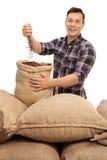 Fazendeiro novo que enche um saco de serapilheira com os feijões de café Foto de Stock