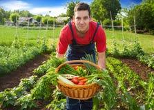 Fazendeiro novo que guarda a cesta com vegetais Fotografia de Stock