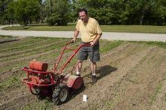 Fazendeiro orgânico Cultivating Between Rows em um Sun quente Foto de Stock Royalty Free