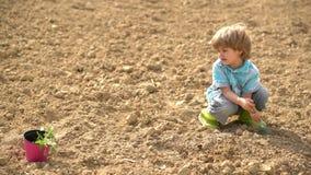 Fazendeiro pequeno feliz que planta no campo da mola Menino bonito da criança que molha o broto no campo Criança e vegetais no filme