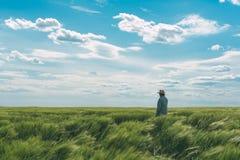 Fazendeiro que anda através de um campo de trigo verde fotografia de stock