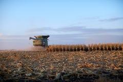 Fazendeiro que colhe a colheita do milho no crepúsculo imagens de stock royalty free