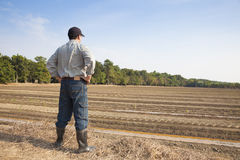 Fazendeiro que está na terra de cultivo imagens de stock royalty free