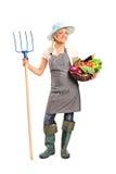 Fazendeiro que prende um pitchfork e vegetais Fotografia de Stock