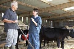 Fazendeiro que tem a discussão com veterinário Fotografia de Stock Royalty Free