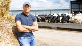 Fazendeiro que trabalha na exploração agrícola com vacas de leiteria imagens de stock royalty free