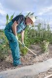 Fazendeiro que trabalha a terra Fotos de Stock