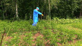 Fazendeiro que usa o pulverizador do inseticida para proteger a colheita da batata video estoque