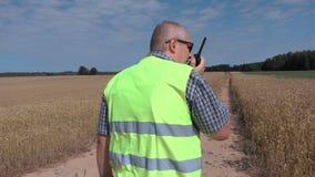 Fazendeiro que usa a tabuleta e o Walkietalkie no campo de cereal vídeos de arquivo