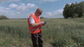 Fazendeiro que usa a tabuleta no campo de cereal vídeos de arquivo