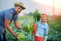 fazendeiros fotografia de stock royalty free