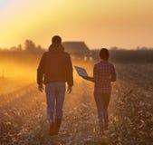 Fazendeiros que andam no campo Fotografia de Stock