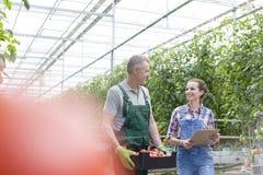 Fazendeiros que discutem ao andar por plantas na estufa fotos de stock royalty free