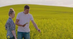 Fazendeiros que discutem ao usar o tablet pc na exploração agrícola filme