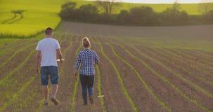 Fazendeiros que falam ao andar no campo agrícola video estoque