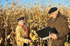 Fazendeiros sérios no campo fotos de stock royalty free