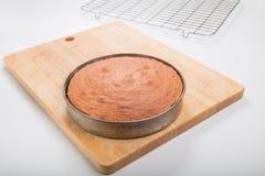 Fazendo bolos de esponja, bolo cozinhado dentro ainda na lata foto de stock royalty free