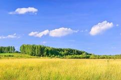 Fazendo feno terras Foto de Stock