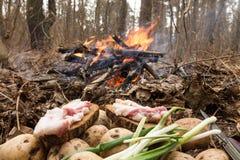 Fazendo o brinde, bacon, cebola, incêndios florestais fotos de stock