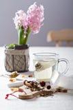 Fazendo o chá com saquinhos de chá Imagem de Stock