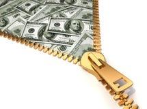 Fazendo o dinheiro Fotografia de Stock Royalty Free