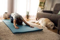 Fazendo o exercício com meu cão preguiçoso Imagens de Stock