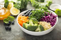 Fazendo a salada do superfood da desintoxicação Fotografia de Stock