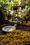 Fazendo a seda em Tailândia Foto de Stock Royalty Free