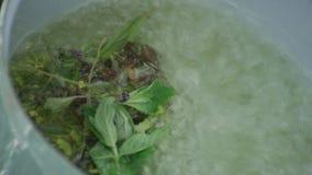 Fazendo um chá com herbes selvagens filme