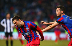 FC Steaua Bucharest - U Cluj Arkivbild