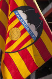FC Valencia Flag Stock Photos