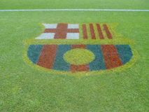 FCB stadium grass stock photo