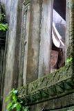 fe Fotografía de archivo