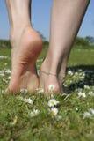 Füße der Frau in der sonnigen Wiese Lizenzfreie Stockfotos