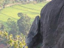 Feald della risaia e della roccia immagini stock libere da diritti