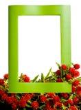 Feame di legno con i fiori rossi Fotografia Stock