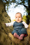 Fear - baby on big tree Stock Image