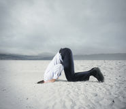 Fear of crisis with businessman like an ostrich. Afraid businessman hide his head under the ground like an ostrich. Fear of crisis concept Stock Photos