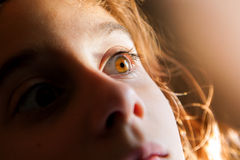 Fearful Eye Royalty Free Stock Photos