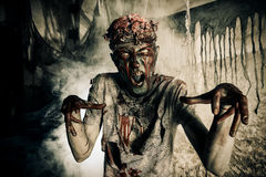 Fearful zombie. Terrible bloody zombie man  with the brains out in search of his victim. Horror. Halloween concept Stock Photos