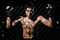 Fearles MMA Fighter ready to fight. Dramatic portrait of a MMA Fighter grabbing the fighting cage and intimidating his opponents Royalty Free Stock Photography
