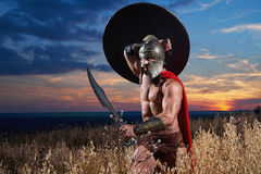Fearless young Spartan warrior posing in the field royalty free stock photos