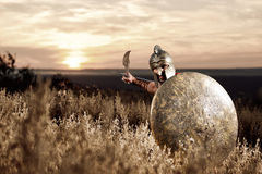 Fearless young Spartan warrior posing in the field Royalty Free Stock Images