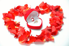 Feast of Love Royalty Free Stock Image