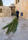 Feast of tabernacles. JERUSALEM, ISRAEL - 08 OCTOBER, 2014: A jewish man is pulling palm leaves with him to prepare for the 'feast of tabernacles' also calle Royalty Free Stock Photography