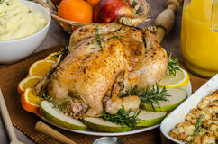 Feasting - stuffed roast chicken with herbs. Mashed potatoes with oregano leaves and homemade stuffing with herbs, freshly squeezed orange juice, fresh fruits Stock Images