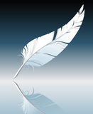 Feather. White feather over blue background - vector illustration Royalty Free Stock Image