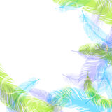 Feather. Background illustration of feather beautiful colorful Royalty Free Stock Image