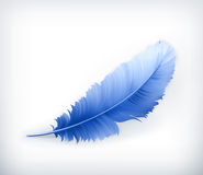 Free Feather Stock Image - 25960191